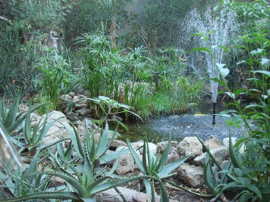 Amon Hotel Luxor: hotel garden