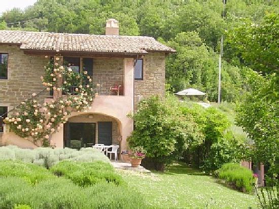 Casa Rosa : The Farm House and Apartments