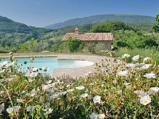 Pool at Casa Rosa (umbria