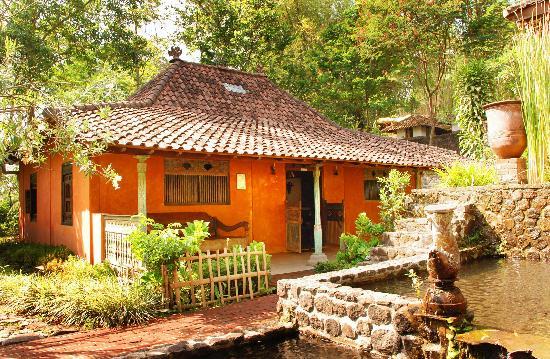 Kaliandra Eco Resort & Farm: baratapura area