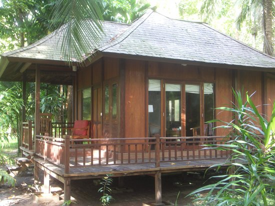Our AC Cabin - small frogs underneath serenade you to sleep
