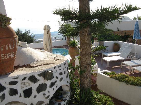 Sofia Hotel Santorini : Der Garten mit Pool vom Hotel Sofia