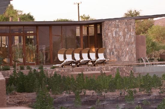 Tierra Atacama Hotel & Spa: Pool & Lounge