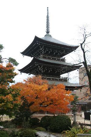 Hotel Hana: Hida Kokubun-ji Pagoda next door