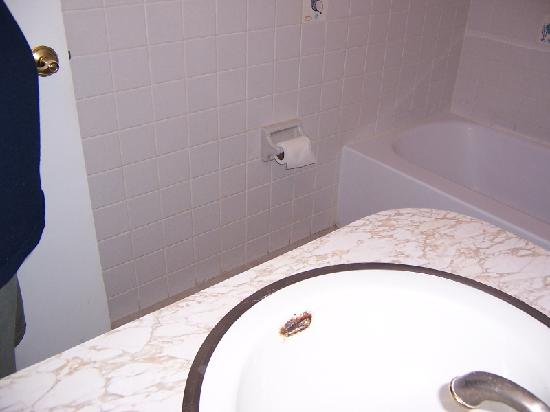 Bathroom Sink Picture Of Pineapple Place Apartments Pompano Beach