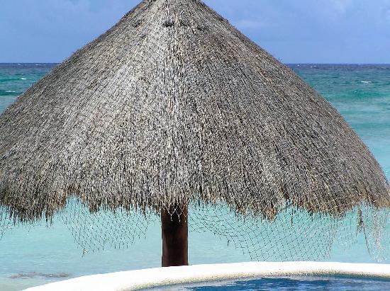 Playa Caribe: Condo Palapa