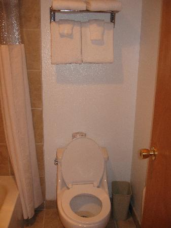 Days Inn Lakewood South Tacoma: Toilet - you can see it's a small bathroom.