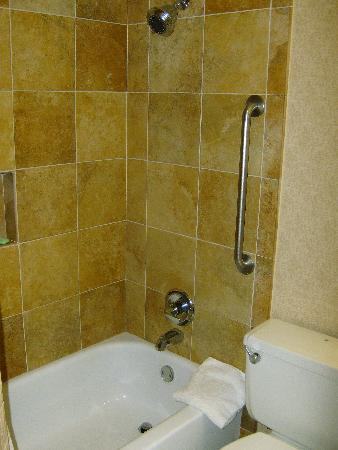 Holiday Inn San Antonio Downtown Market Square: My shower was recently retiled.