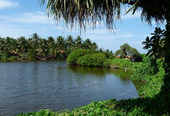 Marawila, ศรีลังกา: Lagoon view