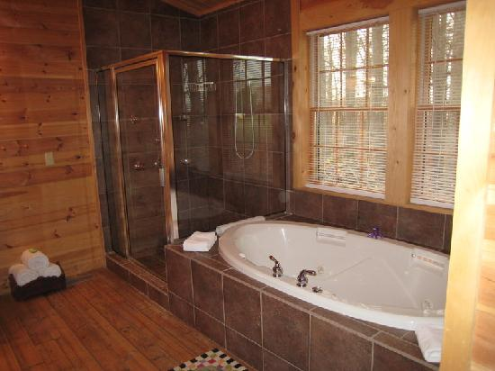 Murphin Ridge Inn: shower and tub
