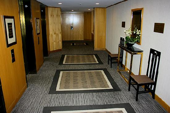 Stamford Plaza Auckland : 10th floor hall