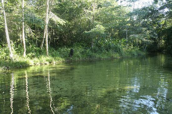 Baia da Traicao, PB: rio gozo baia da traiçao