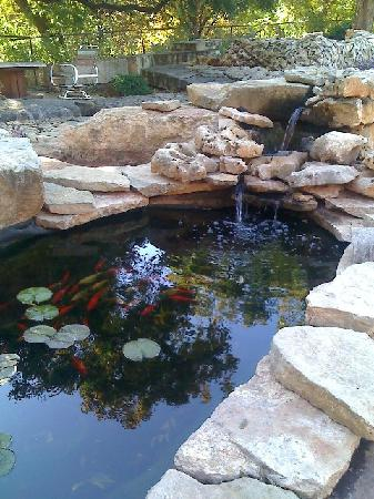 Sparhawk Bed and Breakfast: The Koi pond in the Rock Garden