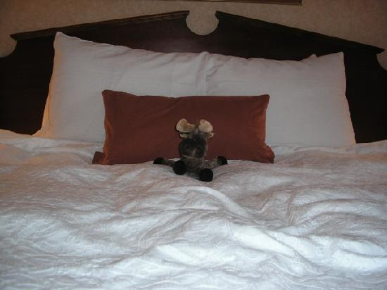 Hampton Inn Birch Run/Frankenmuth : Hampton Inn Birch Run- Comfy King Bed!  (Moose Not Included- bought at the Harry & David Store)