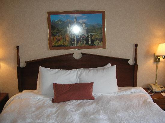 Hampton Inn Birch Run/Frankenmuth: Hampton Inn Birch Run- Comfy King Bed!