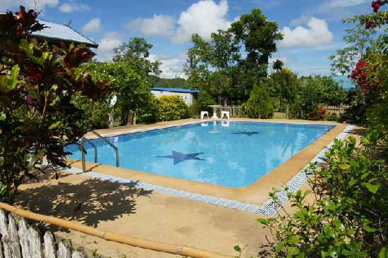 Mountain View Guest House : The pool