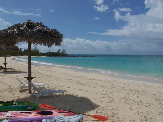 Sammy T's Beach Resort照片