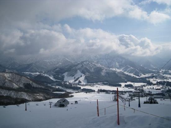 Guest House Vingt-Neuf: Snow snow everywhere
