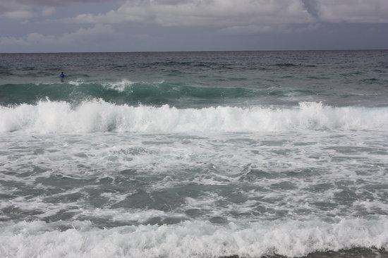 Mayaguez, Porto Rico: Surf in Isabela PR