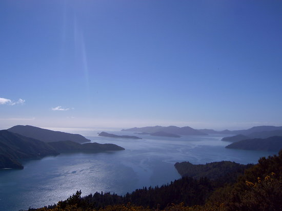 Picton, Nouvelle-Zélande : View from Eatwells Lookout