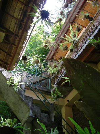 Ketut's Place: looking up from a lower level
