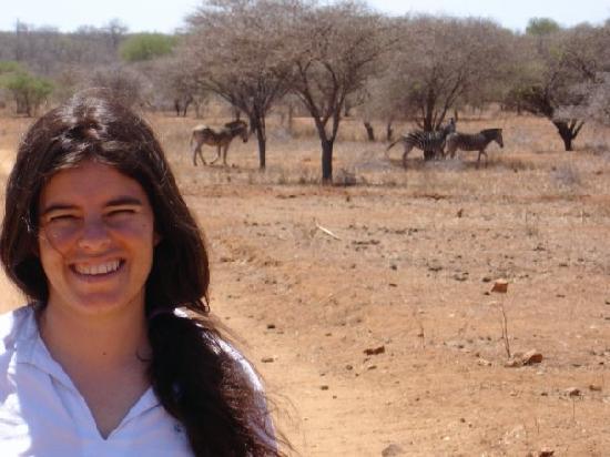 Elandela Private Game Reserve: Una tarde que salimos a caminar, y nos encontramos con muchisimas zebras