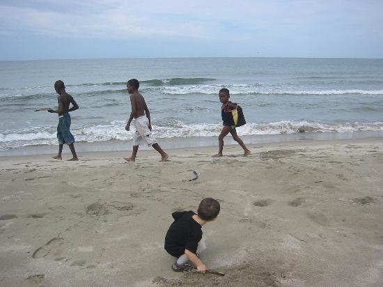 Honduras Shores Plantation: Daniels new buddies