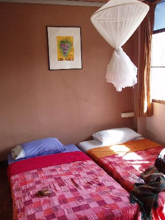 Micasa Guesthouse: 室内(mango)