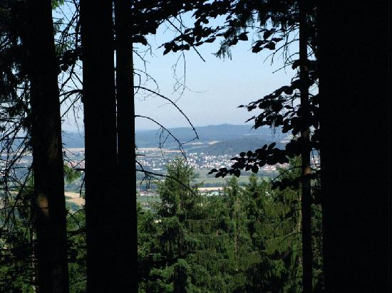 Waldhotel Hufeisenhof: View from the Trails