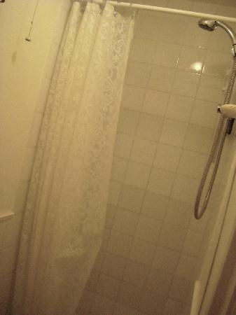 Ashtrees Guest House: shared shower