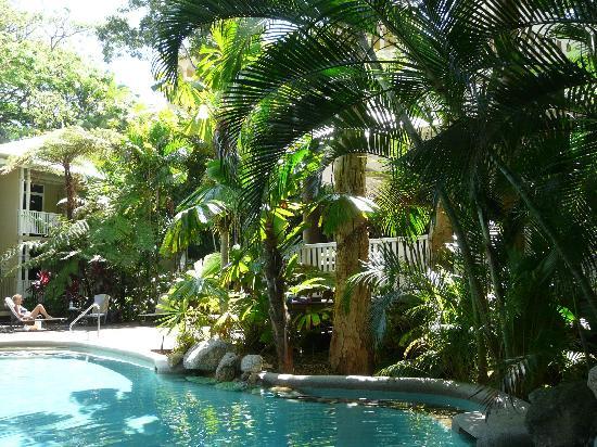 Palm Cove Tropic Apartments: exotic lagoon pool