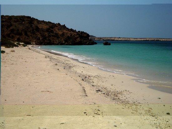 Saudi Arabia: Farasan Island - White sand emppty beach I