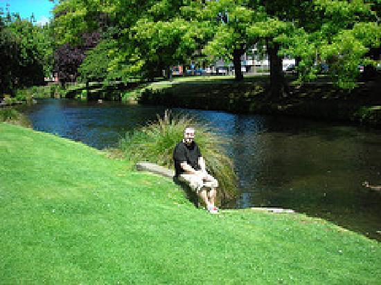 Cedarview Farm Homestay B+B: Relaxing by the Avon Christchurch