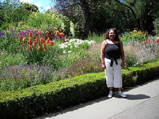 Cedarview Farm Homestay B+B: The Botanic Gardens Christchurch