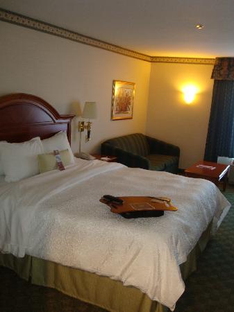 Hampton Inn San Francisco-Airport: Bedroom