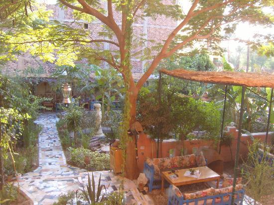 El Fayrouz: garden