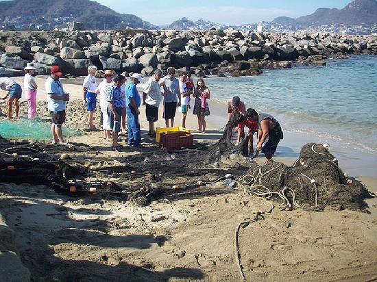 Hotel La Posada: turistas, pescaderos y pelicanos