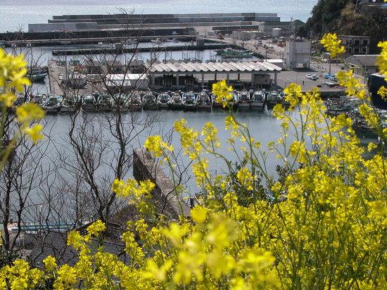 Wakayama Prefecture, Japan: 和歌の浦を走行中峠よりパチリと