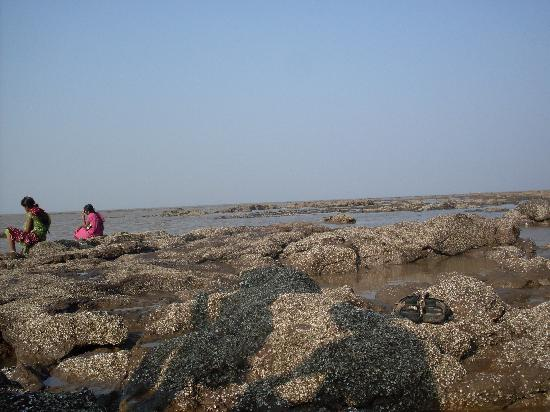 Daman, India: rocky beach at devka beach
