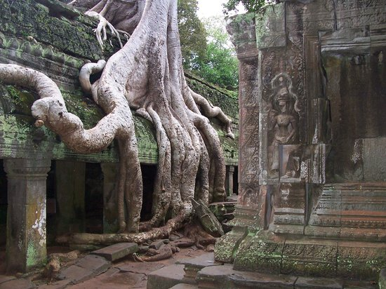 Rambutan Resort - Siem Reap: a great day out at the temples