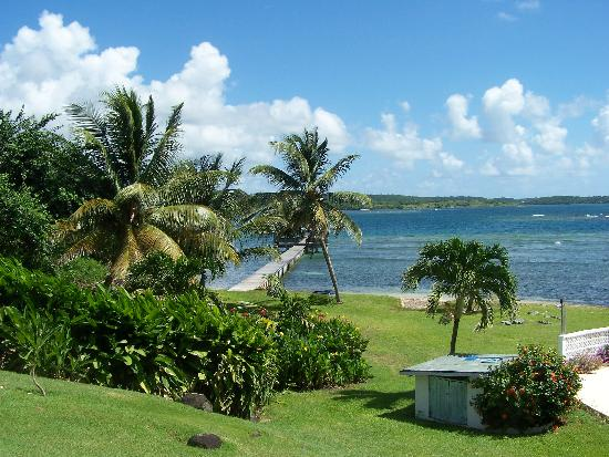 Coral Cove Cottages & Apartments : Coral Cove View