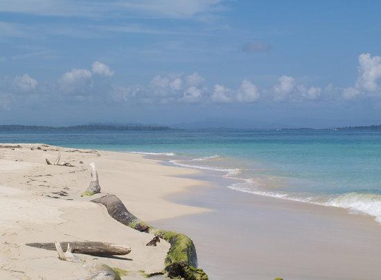 Panama City, Panama: I colori a Bocas del Toro, Isla Zapatilla