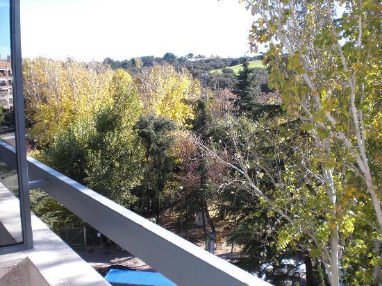 Hotel Eurostars Monte Real: Vistas desde la habitación