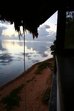 Pension Tarariki: Sunset from the Tree House
