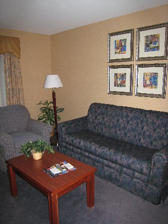 Homewood Suites Brighton: Living Room
