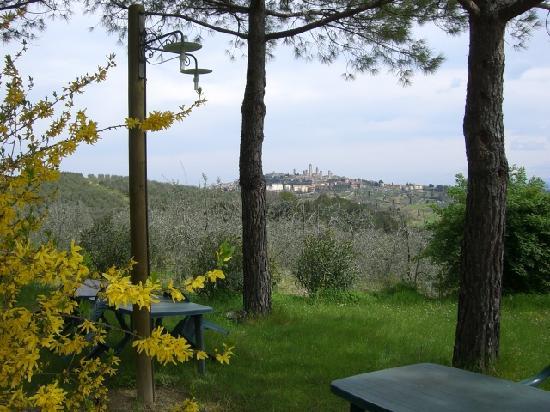 La Limonaia: San Gimignano viewed from the crocus fields