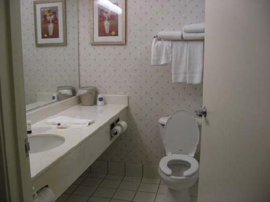 Fairfield Inn Erie Millcreek Mall: bathroom