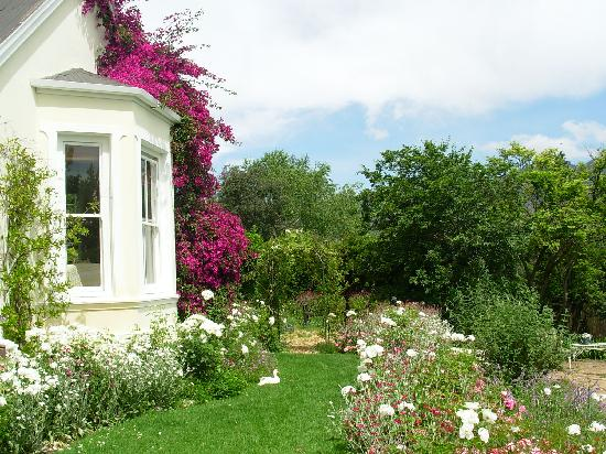 The Garden House: the garden