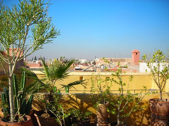 Riad Zina: View from the roof terrace