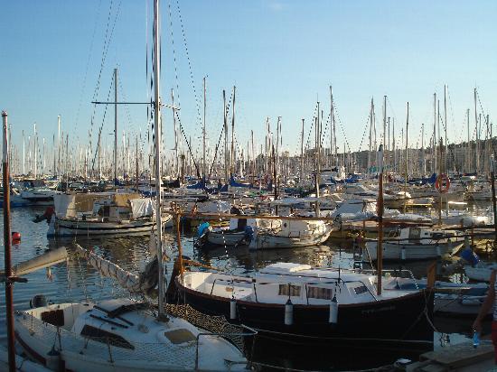 El puerto picture of palma de mallorca majorca tripadvisor - Puerto de palma de mallorca ...